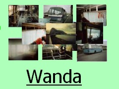 Wanda...My Coach to Camper Project 1992